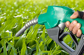 Biofuels & Synthetic Lubricants
